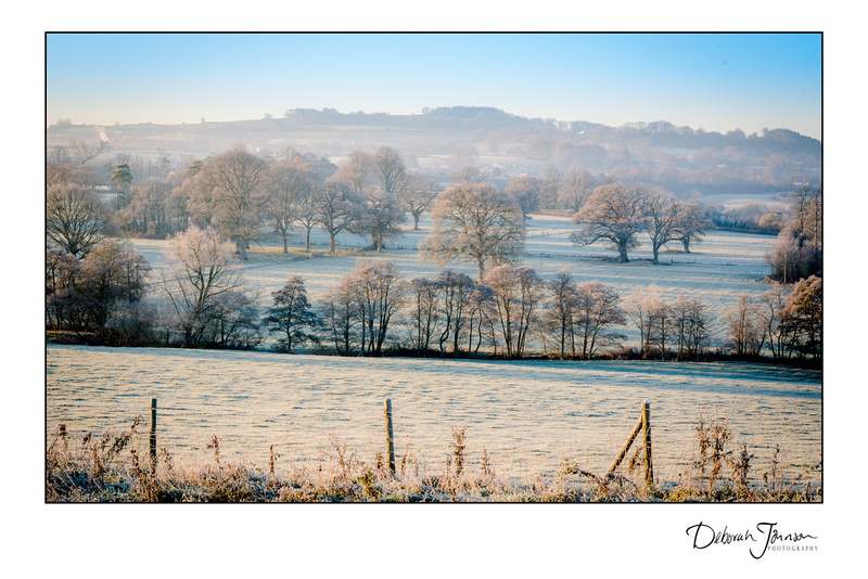 Winter's morning in Somerset