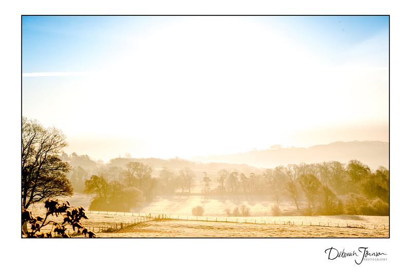 Winter's morning in Somerset